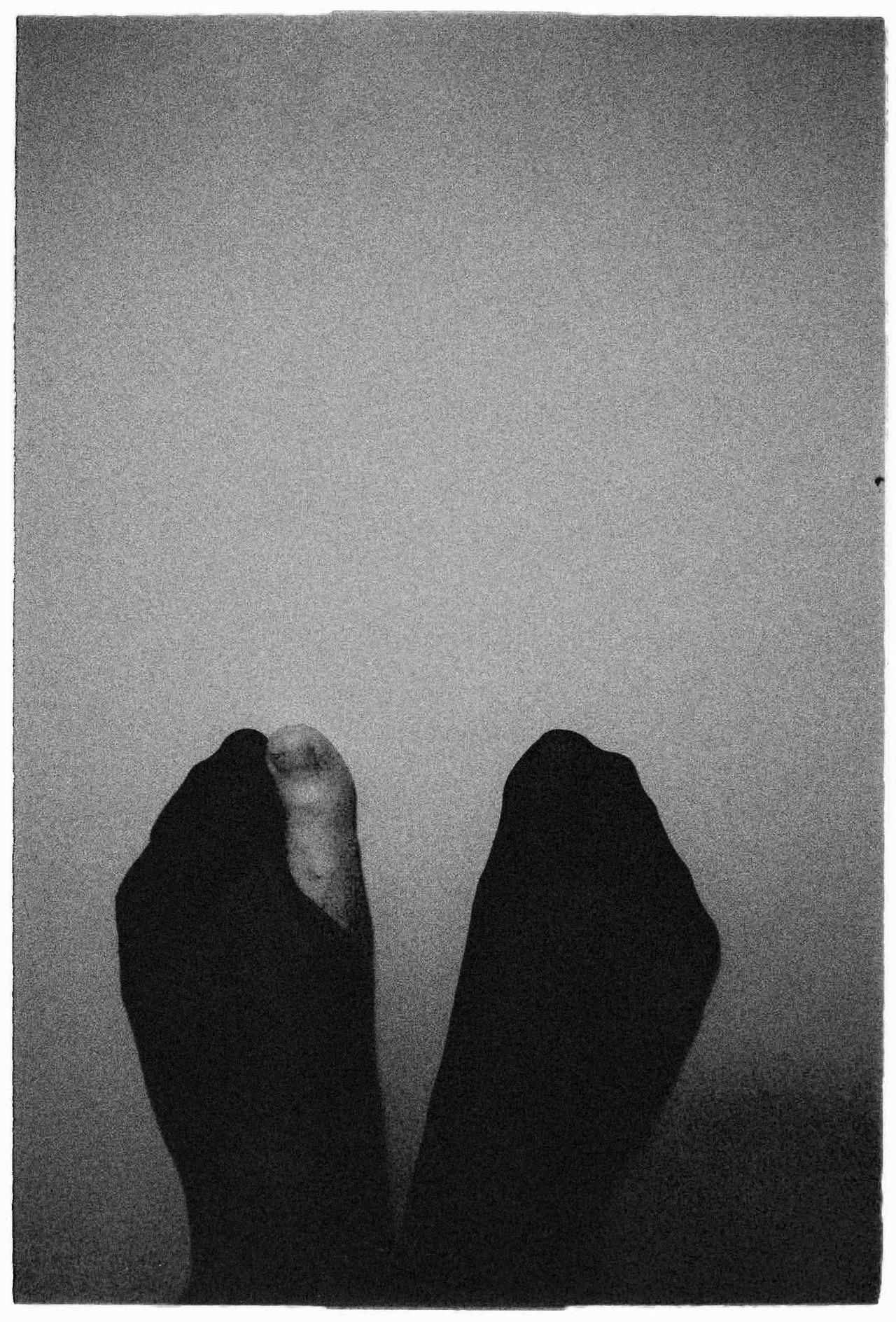 ester-mladenkova-self-fotim-na-film